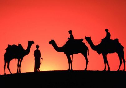 7-day-trip-to-rajasthan-for-solo-travellers